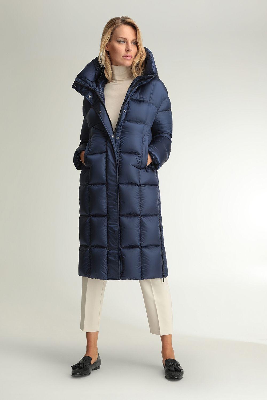 Eunomia blue coat